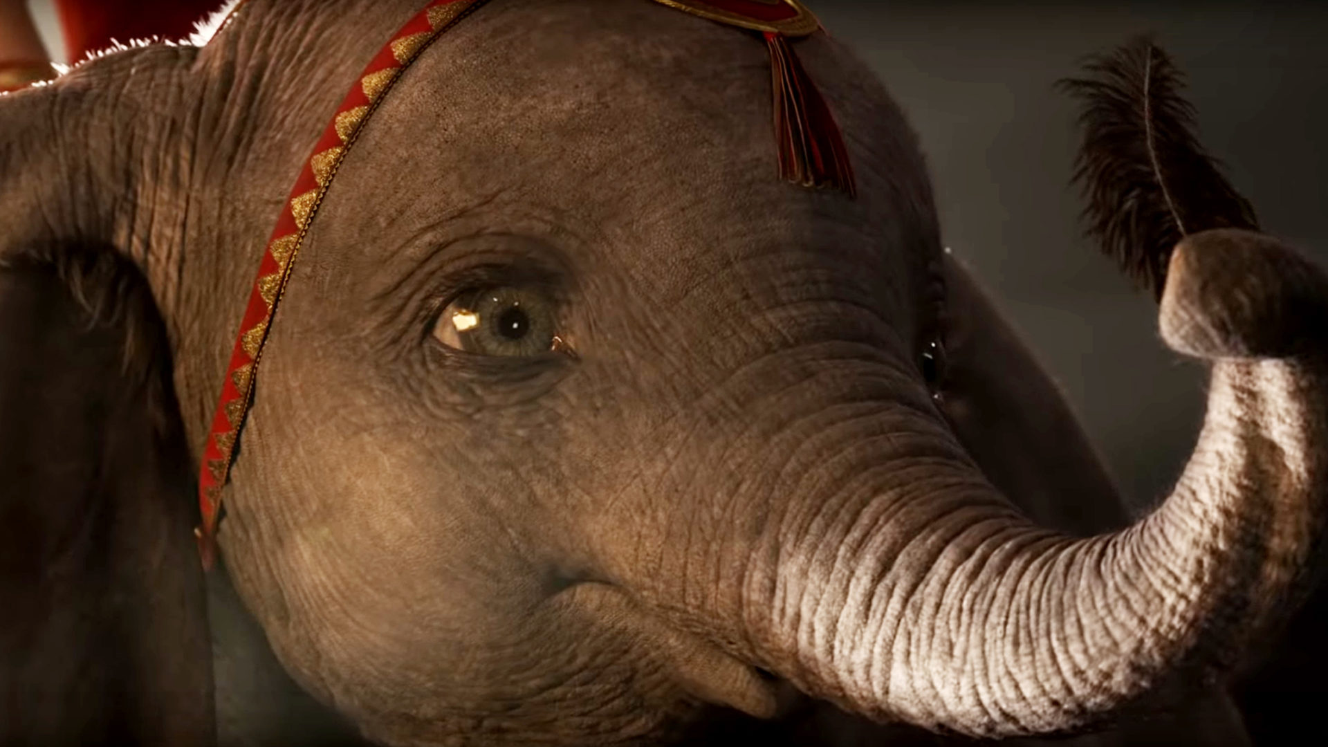 Image result for dumbo movie 1920x1080